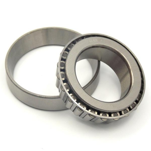 INA WS81113  Thrust Roller Bearing #1 image